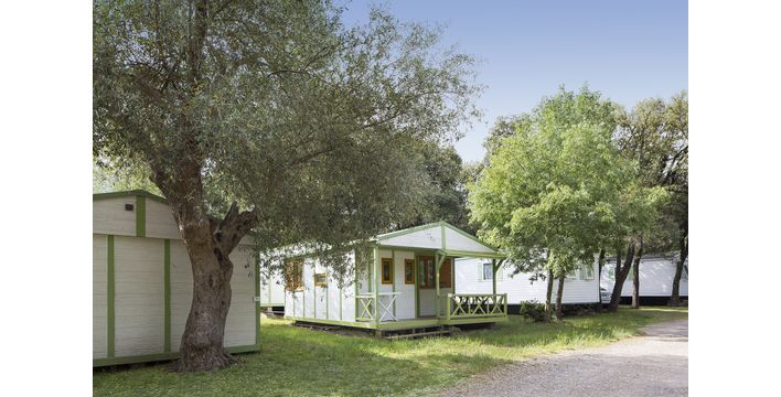Camping de l'Olivette **